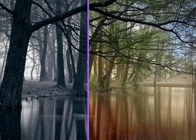 Colorize Photos 6