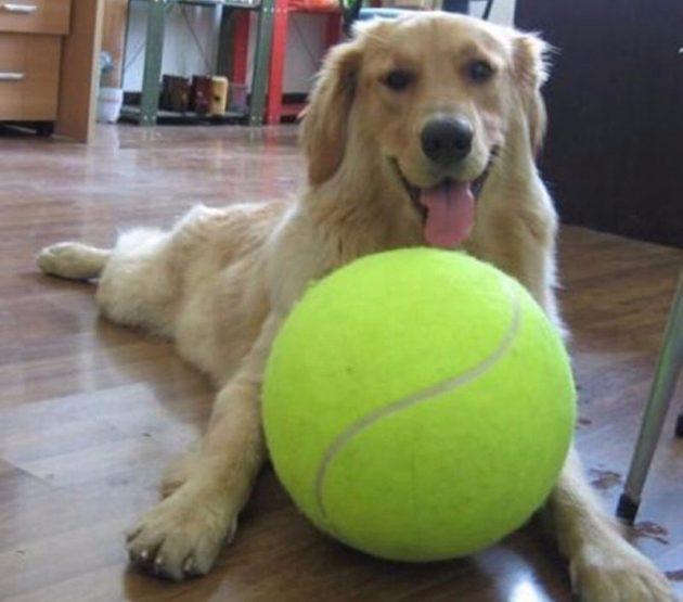 большие вещи: мяч