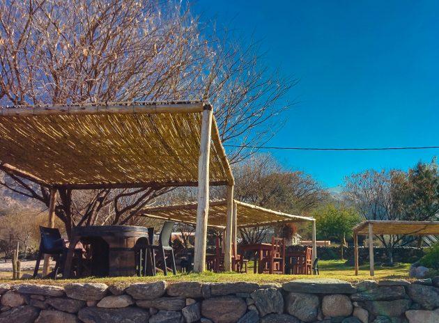 посетить Аргентину: вино