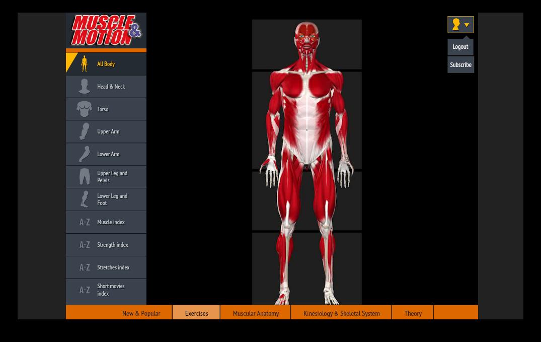 Программа muscle motion скачать