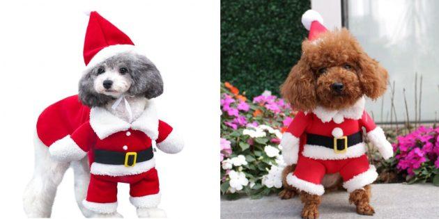 Новогодние костюмы для собак: гавкающий Санта