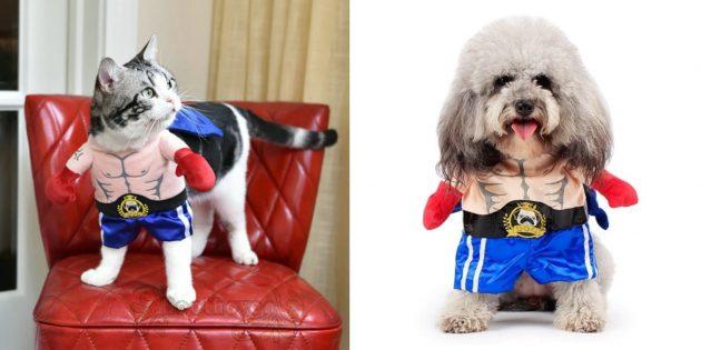 Новогодние костюмы для собак и кошек: боксёр
