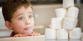 Эксперимент с зефиром, или Как укрепить силу воли