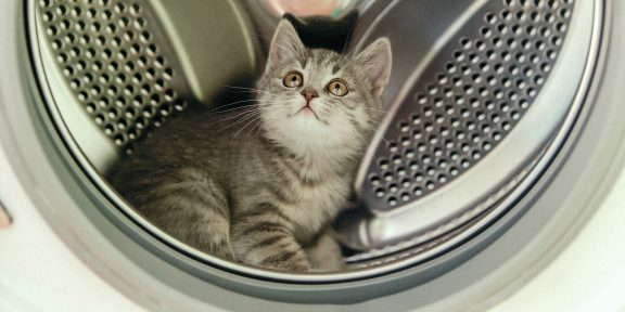 Как без труда почистить стиральную машину