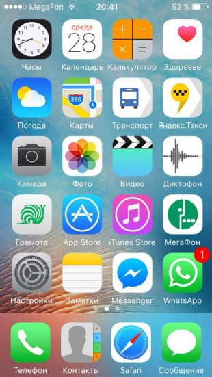 Владимир Пахомов: iPhone