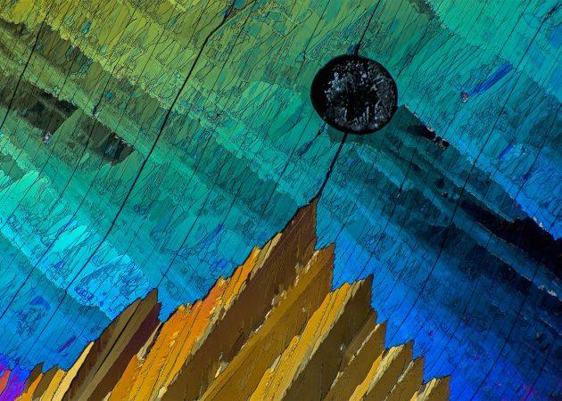под микроскопом фото, адипиновая кислота