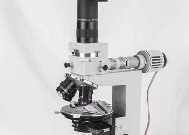 под микроскопом фото
