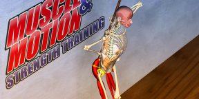Muscle&Motion — приложение, которое заменит фитнес-тренера