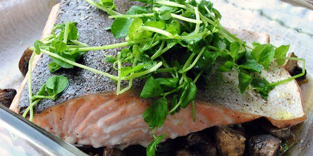 Что приготовить на романтический ужин: Лосось с грибами и трюфельным маслом