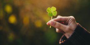 Общие секреты тех, кто не верит в удачу
