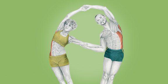 Анатомия стретчинга в картинках: упражнения для мышц корпуса