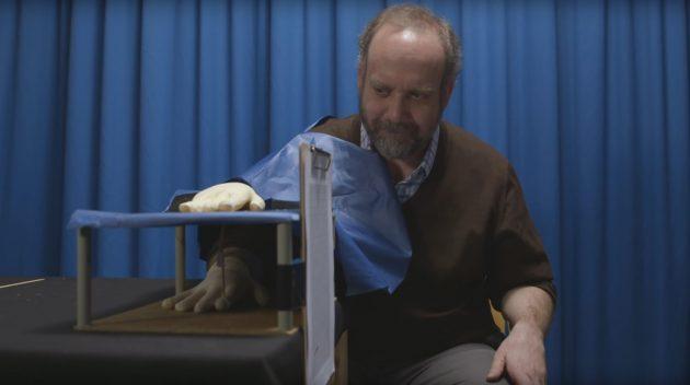 Когнитивные искажения: эксперимент с рукой