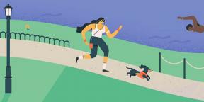 «Google Календарь» научился отслеживать тренировки через Google Fit