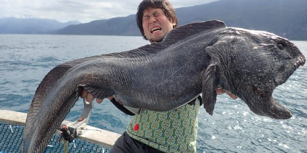Что подарить парню на день рождения: рыбалку