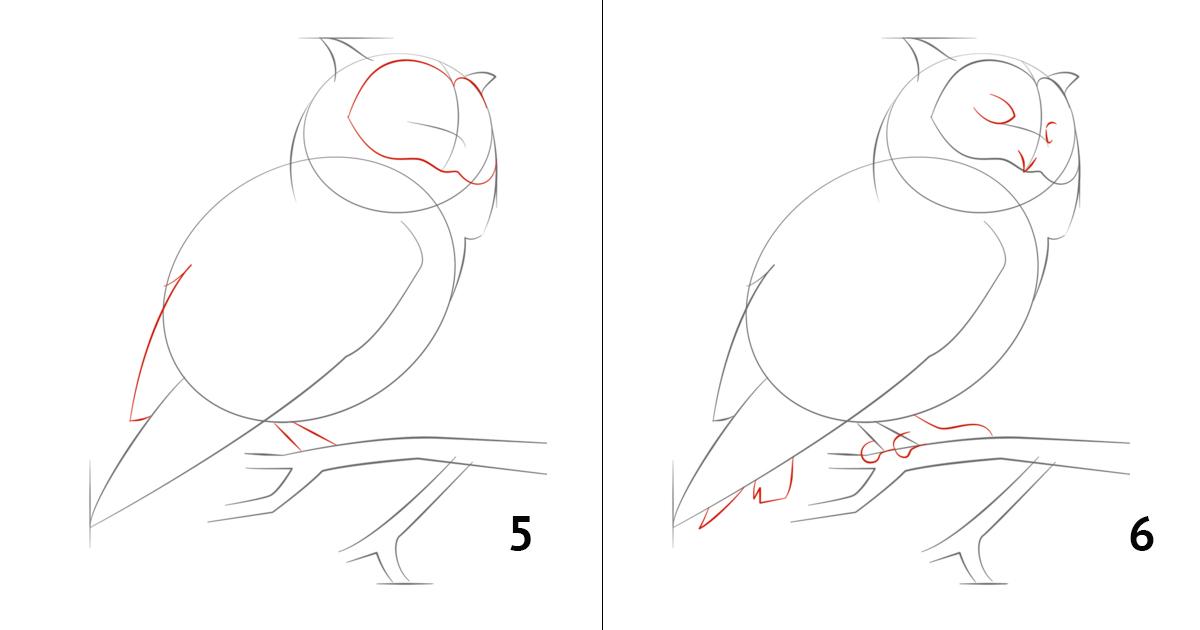 такое термобелье как рисовать сову карандашом поэтапно для начинающих термобелья Craft Baselayer