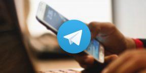 2 полезных бота Telegram, которые помогут сохранить информацию