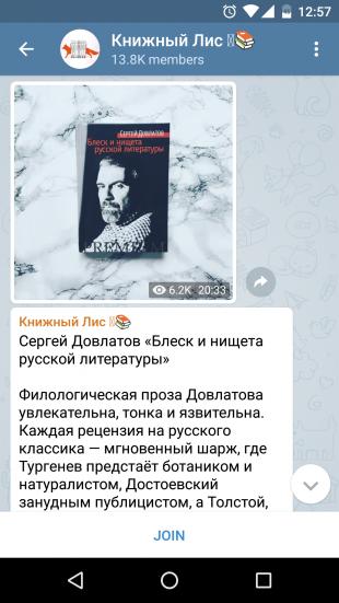 Книжный лис