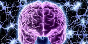 Как омолодить свой мозг