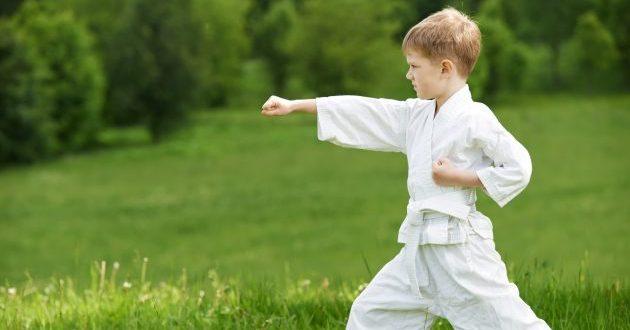 спортивные секции: карате