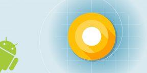 Google выпустила Android O для разработчиков