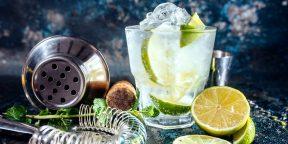 Сам себе бармен: что нужно знать, чтобы готовить коктейли в домашних условиях