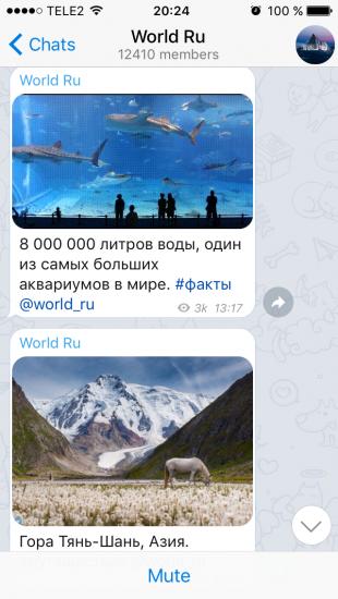 world_ru