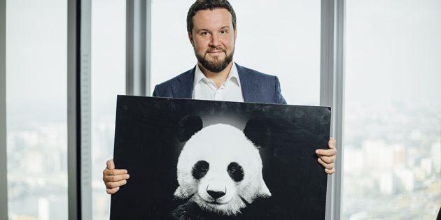 Николай Шестаков: панды