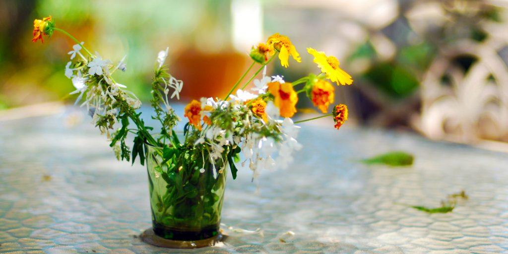 Как оживить увядшие цветы - Лайфхакер