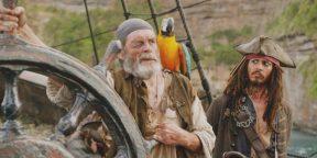 7 причин завести попугая