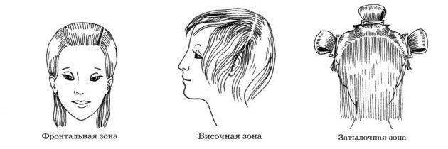 Как сделать кудри: Парикмахерские зоны головы