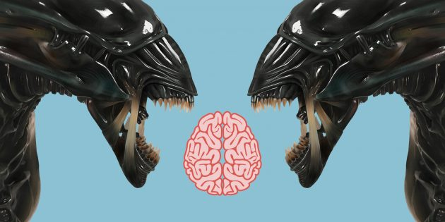 Почему наш мозг делит людей на своих и чужих