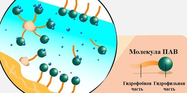 Мицеллярная вода: Молекула ПАВ