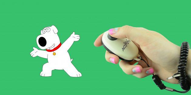 Как дрессировать собак с помощью кликера