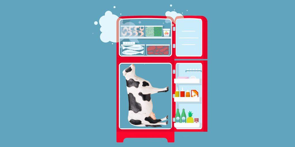 Сроки хранения сухого молока