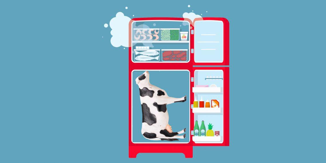 Можно ли пить просроченные кисломолочные продукты: кефир, йогурт и другие