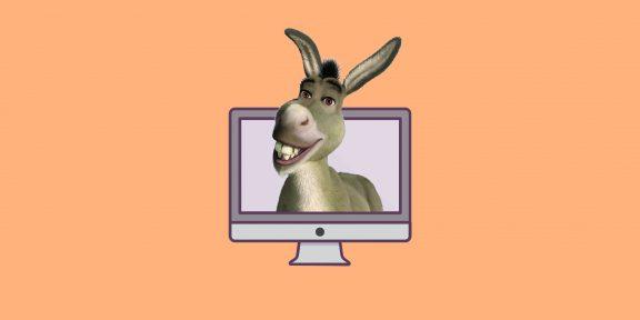 Как не выставить себя дураком в интернете
