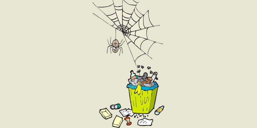 Как избавиться от пауков в квартире и доме?