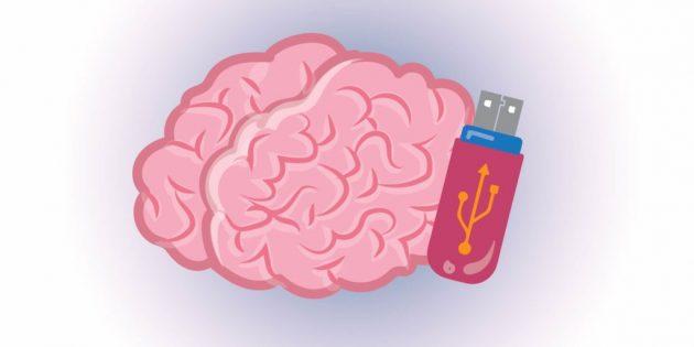факты о мозге: кратковременная память