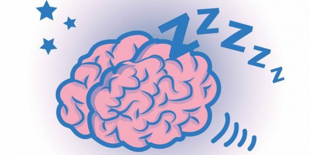 факты о мозге: работа мозга во сне