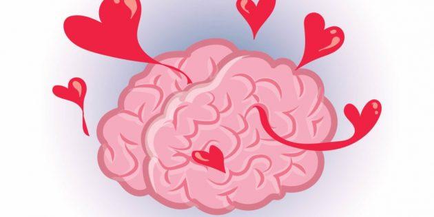 факты о мозге: влюбленность