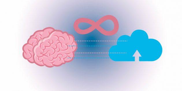 факты о мозге: объем памяти