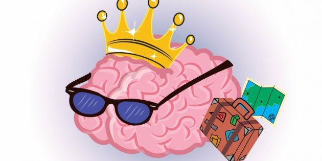 факты о мозге: когнитивный резерв