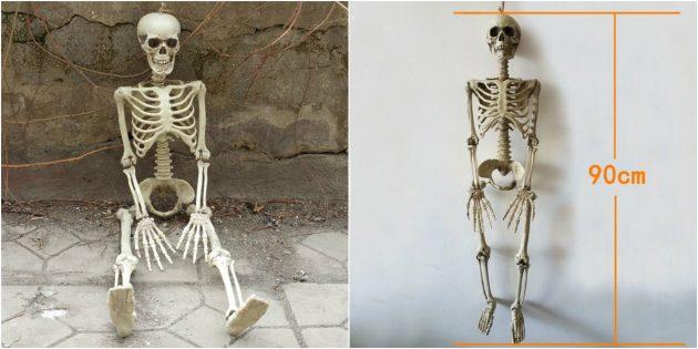 Человеческий скелет