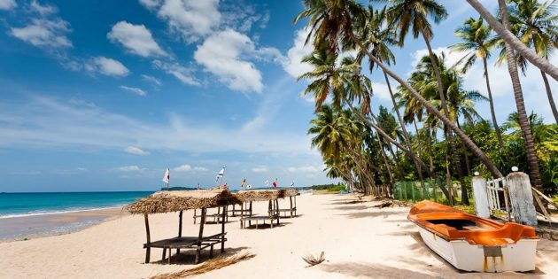 Куда поехать в сентябре: Шри-Ланка