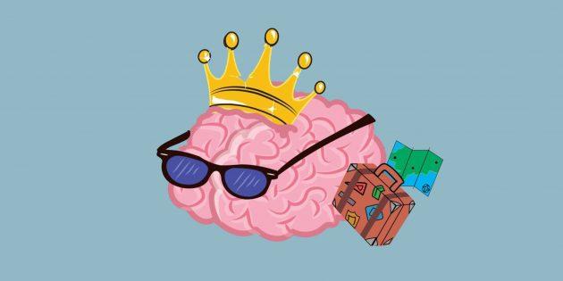 10 удивительных фактов о мозге