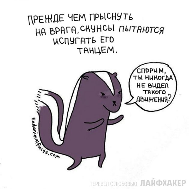 факты о животных 11