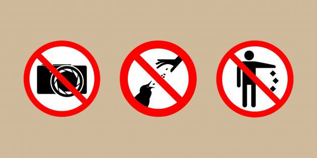 7 вещей, которые не стоит делать во время путешествия