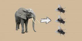 Как принимать взвешенные решения с помощью ментальных моделей