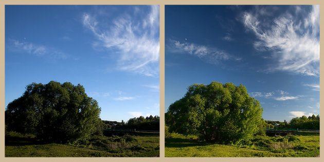Почему вашей камере обязательно нужен поляризационный фильтр