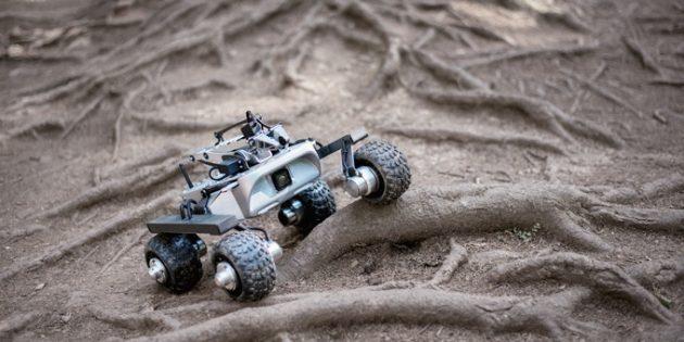 Turtle Rover: внешний вид